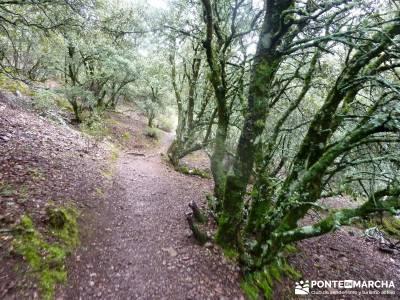 Pico Rocigalgo;Cascada Chorro,Cabañeros; selva de irati buitrago de lozoya trekking sierra de gredo